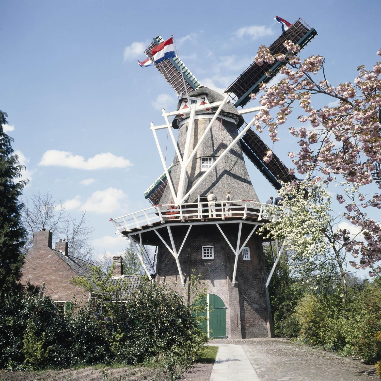 Nationale Molendag: kom in de molen!