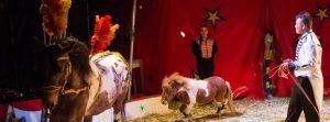 persfoto-01-circus-bossle