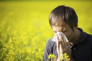 allergieavond-wza